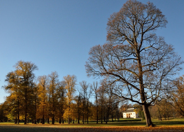 © Pedro Hansson - http://saarimner.com - Drottningholm, autumn