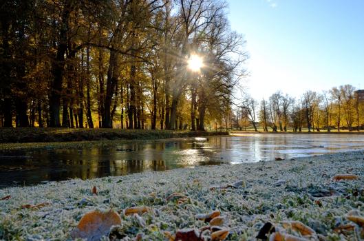 © Pedro Hansson - Ekerö December 2012