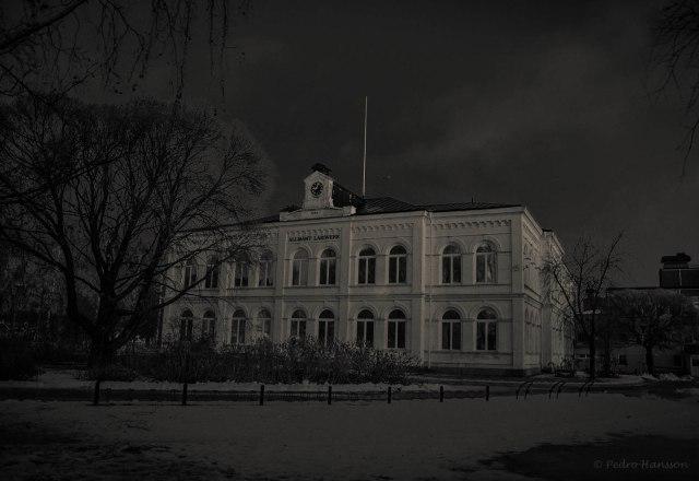 © Pedro Hansson - Christinaskolan