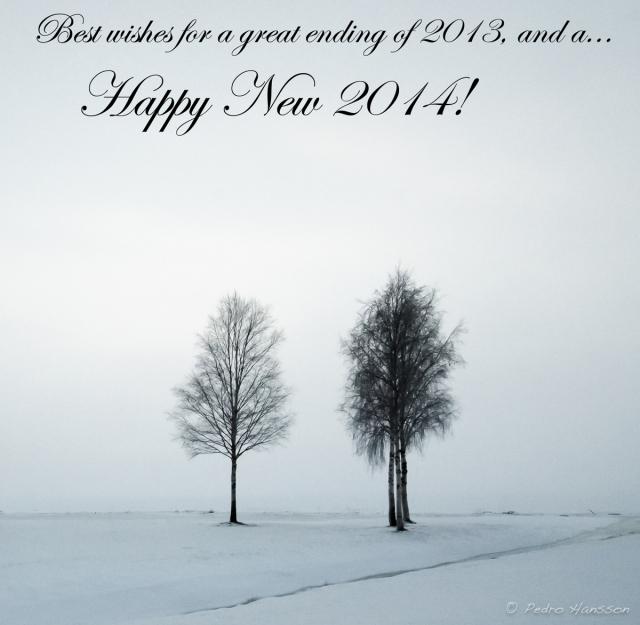 © Pedro Hansson - Happy New 2014!
