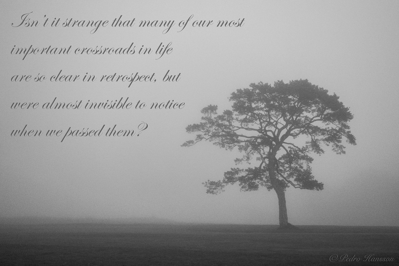 Crossroads of Life | VoiceAmerica Press Blog | Internet ... |Crossroads Of Life